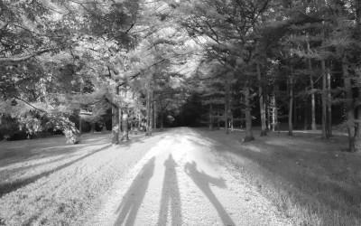 ArboretumTrip101824
